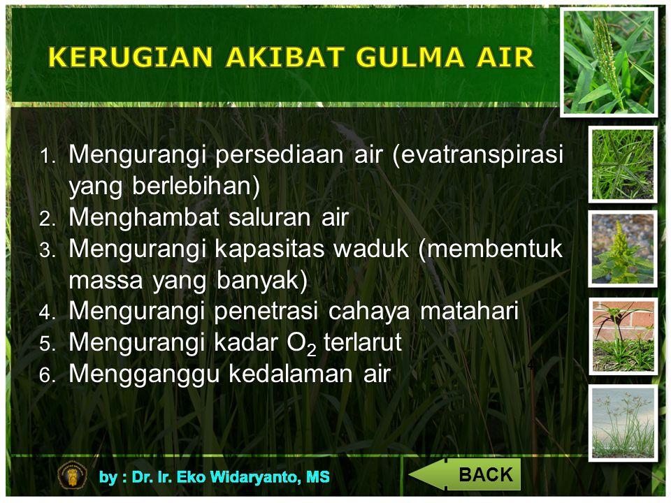 4 1. Mengurangi persediaan air (evatranspirasi yang berlebihan) 2. Menghambat saluran air 3. Mengurangi kapasitas waduk (membentuk massa yang banyak)