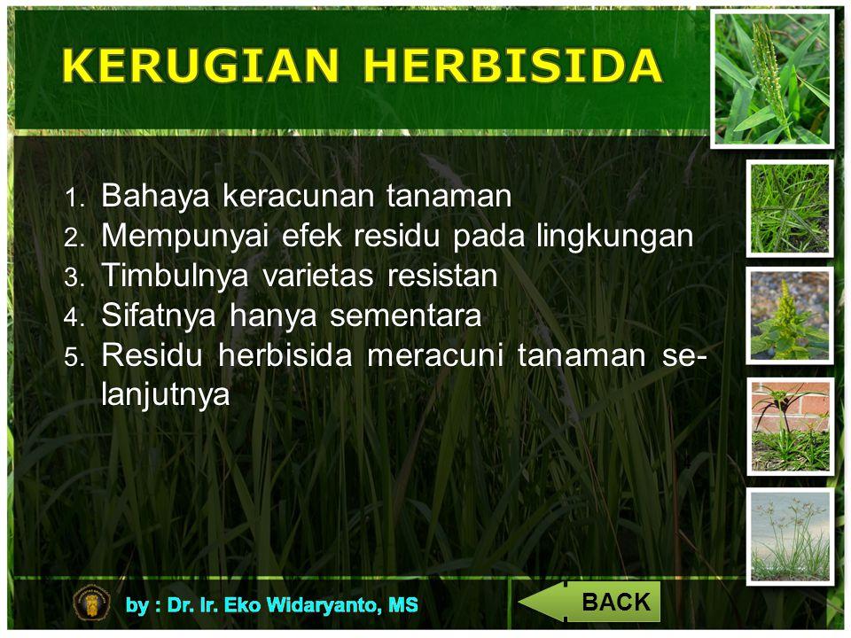 4 1. Bahaya keracunan tanaman 2. Mempunyai efek residu pada lingkungan 3. Timbulnya varietas resistan 4. Sifatnya hanya sementara 5. Residu herbisida