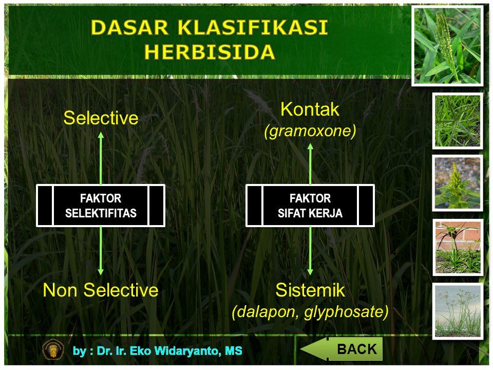 4 FAKTOR SELEKTIFITAS Selective Non Selective FAKTOR SIFAT KERJA FAKTOR SIFAT KERJA Kontak (gramoxone) Sistemik (dalapon, glyphosate) BACK