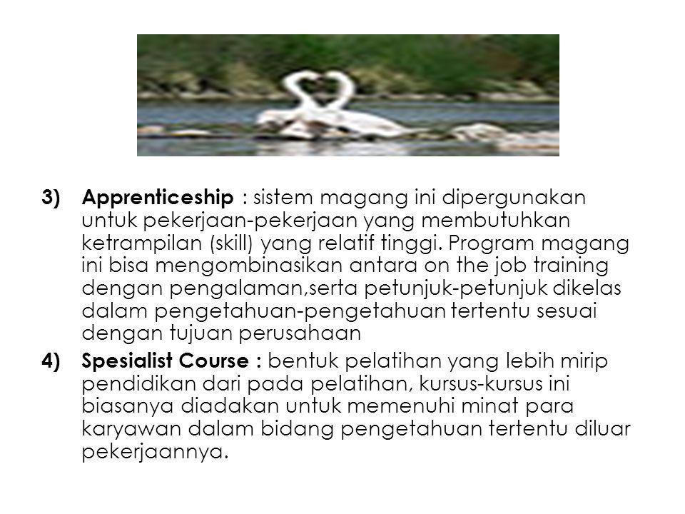 3)Apprenticeship : sistem magang ini dipergunakan untuk pekerjaan-pekerjaan yang membutuhkan ketrampilan (skill) yang relatif tinggi. Program magang i