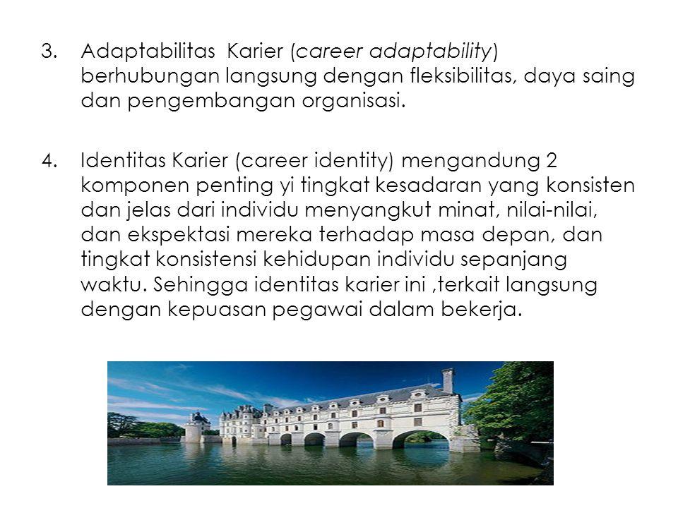 3.Adaptabilitas Karier (career adaptability) berhubungan langsung dengan fleksibilitas, daya saing dan pengembangan organisasi. 4.Identitas Karier (ca
