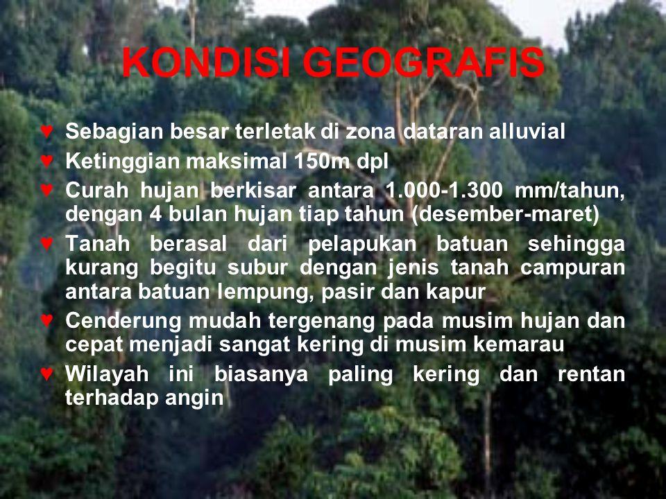KONDISI GEOGRAFIS ♥Sebagian besar terletak di zona dataran alluvial ♥Ketinggian maksimal 150m dpl ♥Curah hujan berkisar antara 1.000-1.300 mm/tahun, d