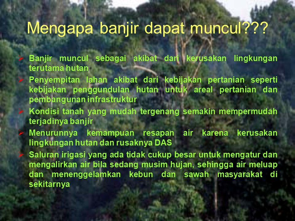 Mengapa banjir dapat muncul???  Banjir muncul sebagai akibat dari kerusakan lingkungan terutama hutan  Penyempitan lahan akibat dari kebijakan perta