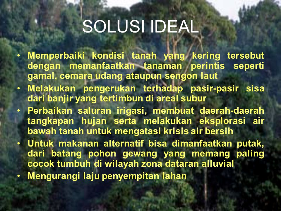 SOLUSI IDEAL Memperbaiki kondisi tanah yang kering tersebut dengan memanfaatkan tanaman perintis seperti gamal, cemara udang ataupun sengon laut Melak