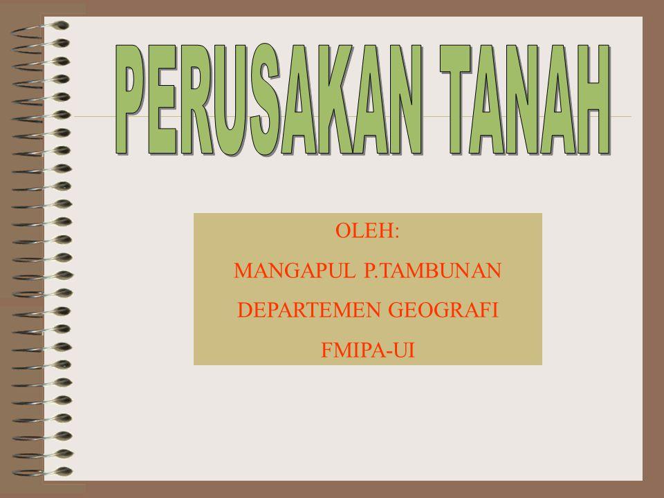 OLEH: MANGAPUL P.TAMBUNAN DEPARTEMEN GEOGRAFI FMIPA-UI