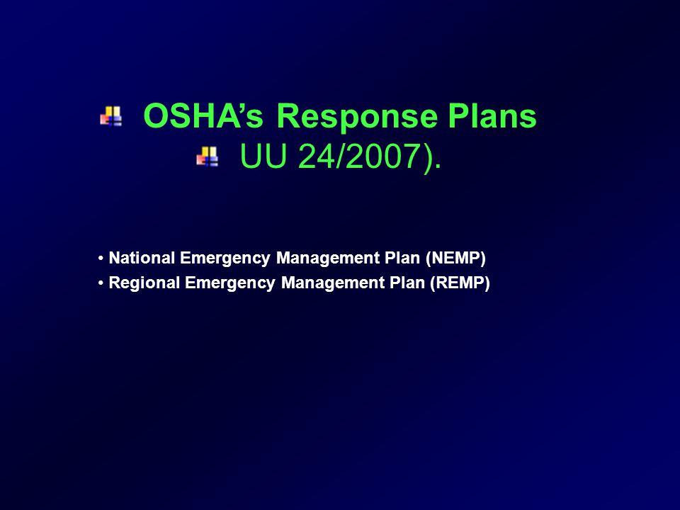 Kegiatan-kegiatan Manajemen Bencana