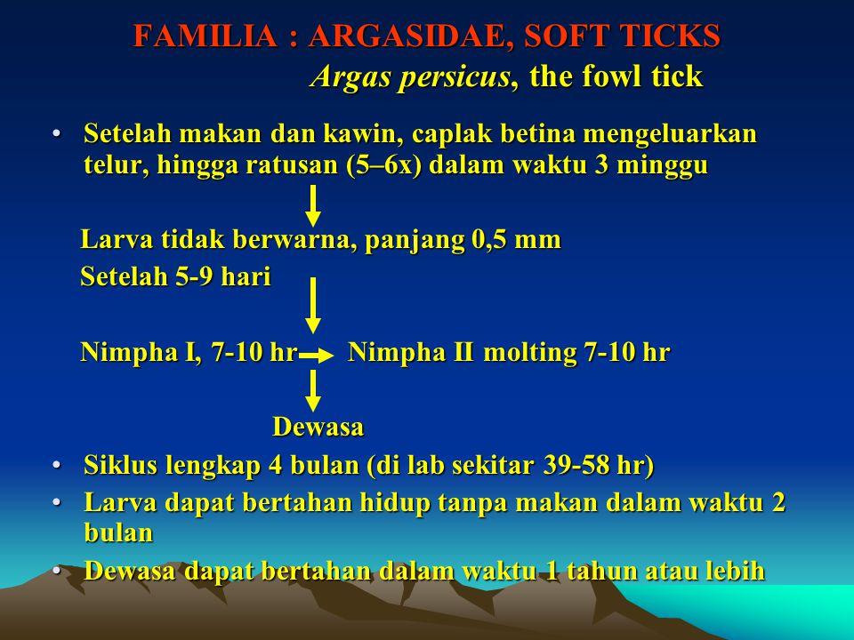 FAMILIA : ARGASIDAE, SOFT TICKS Argas persicus, the fowl tick Setelah makan dan kawin, caplak betina mengeluarkan telur, hingga ratusan (5–6x) dalam w