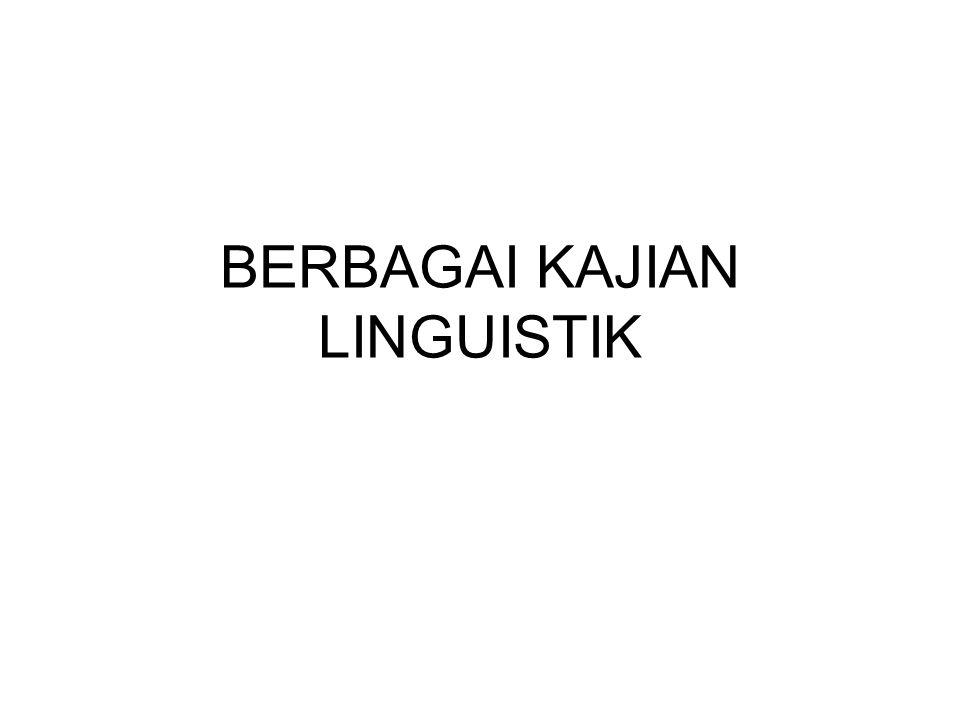 Sosiolinguistik (1) Kajian sosiolinguistik cenderung berfokus pada variasi bahasa yang muncul di masyarakat yang biasanya dapat ditelusuri karena keberadaan berbagai stratifikasi sosial dalam masyarakat.
