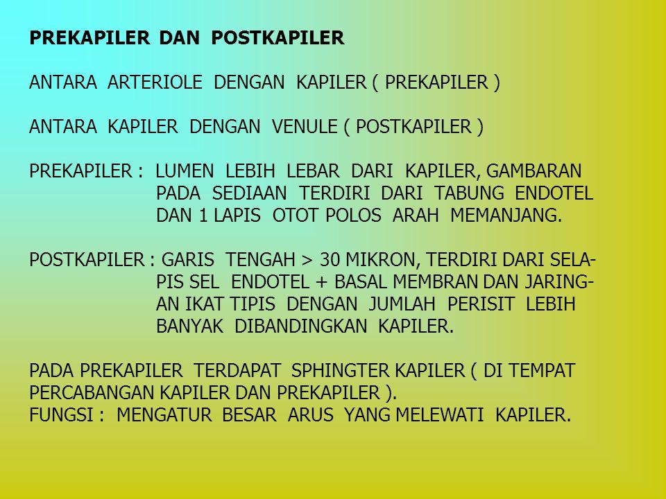 PREKAPILER DAN POSTKAPILER ANTARA ARTERIOLE DENGAN KAPILER ( PREKAPILER ) ANTARA KAPILER DENGAN VENULE ( POSTKAPILER ) PREKAPILER : LUMEN LEBIH LEBAR