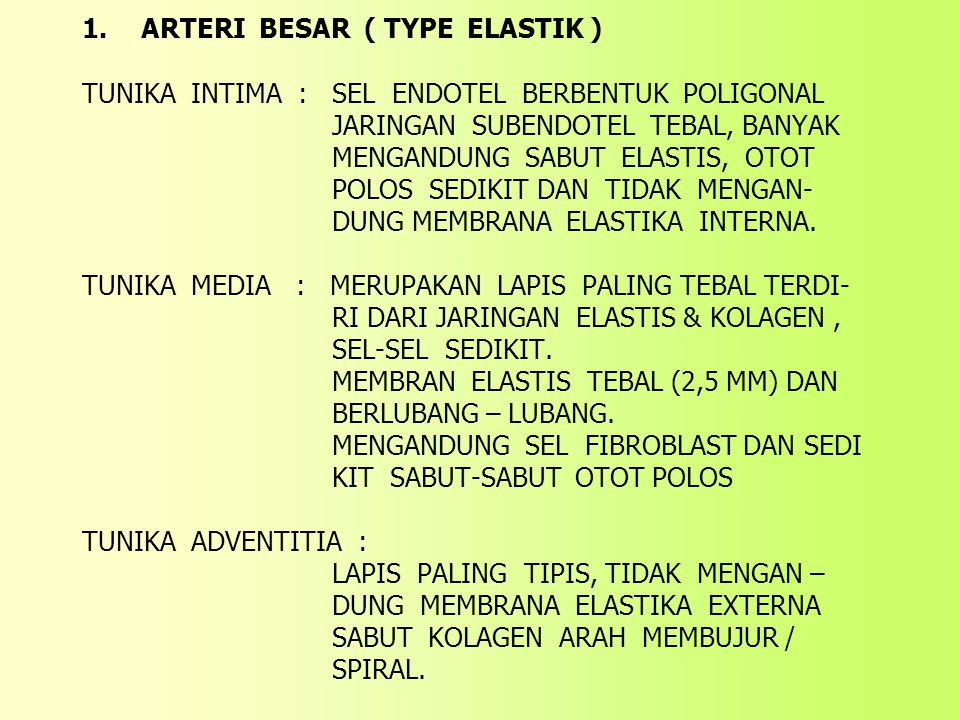 1. ARTERI BESAR ( TYPE ELASTIK ) TUNIKA INTIMA : SEL ENDOTEL BERBENTUK POLIGONAL JARINGAN SUBENDOTEL TEBAL, BANYAK MENGANDUNG SABUT ELASTIS, OTOT POLO