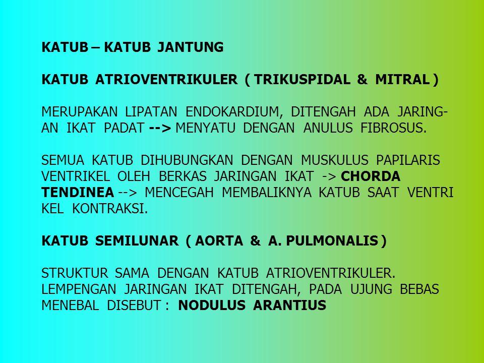 KATUB – KATUB JANTUNG KATUB ATRIOVENTRIKULER ( TRIKUSPIDAL & MITRAL ) MERUPAKAN LIPATAN ENDOKARDIUM, DITENGAH ADA JARING- AN IKAT PADAT --> MENYATU DE