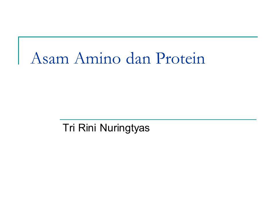 Asam Amino dan Protein Tri Rini Nuringtyas