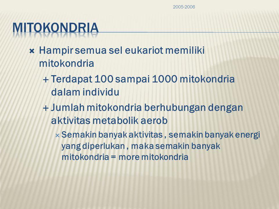 Mitokondria memiliki DNA dan Ribosom sendiri Mitokondria memiliki DNA sendiri, ribosom, dapat membuat protein sendiri.