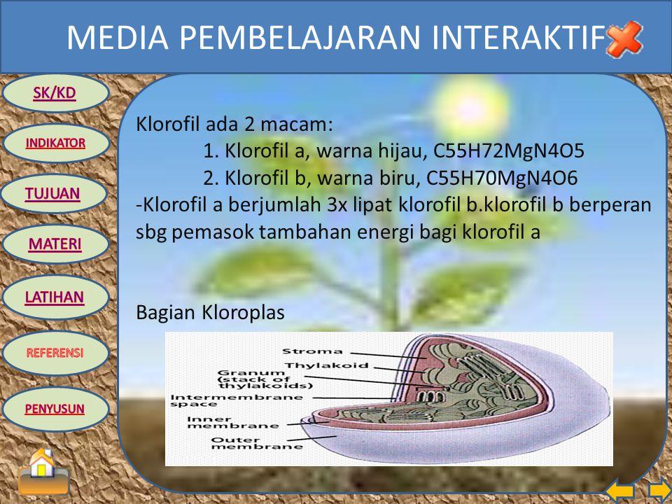 MEDIA PEMBELAJARAN INTERAKTIF Proses fotosintesis, klorofil merefleksikan warna hijau dan sebagian warna kuning dan menyerap seluruh energi dari warna