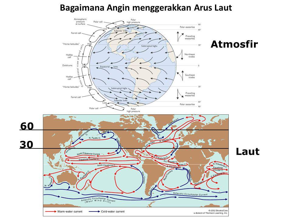 Bagaimana Angin menggerakkan Arus Laut Atmosfir Laut 30 60