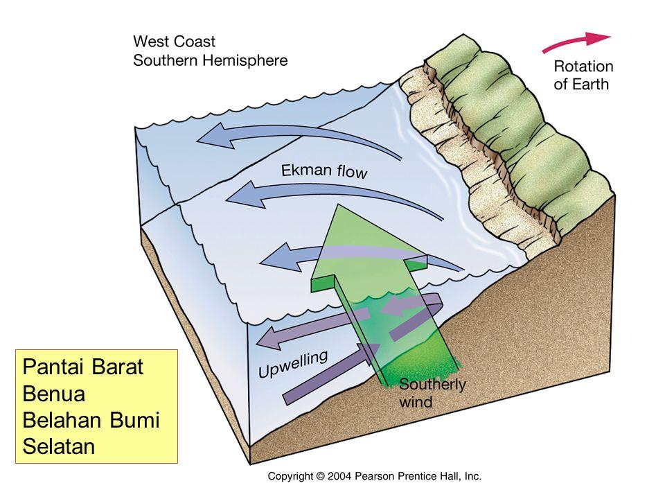 Pantai Barat Benua Belahan Bumi Selatan
