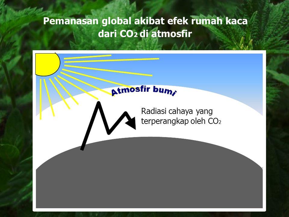 Pemanasan global akibat efek rumah kaca dari CO 2 di atmosfir Radiasi cahaya yang terperangkap oleh CO 2