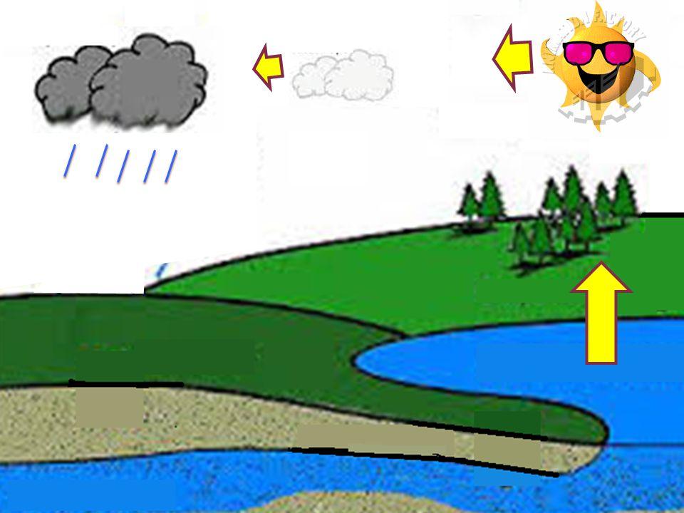 Siklus air atau siklus hidrologi adalah sirkulasi air yang tidak pernah berhenti dari atmosfer ke bumi dan kembali ke atmosfir melalui kondensasi, presipitasi, evaporasi dan transpirasi.