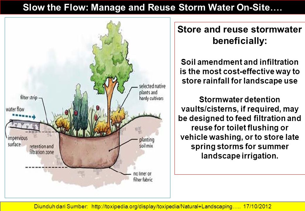 Diunduh dari Sumber: http://toxipedia.org/display/toxipedia/Natural+Landscaping….. 17/10/2012 Slow the Flow: Manage and Reuse Storm Water On-Site …. S