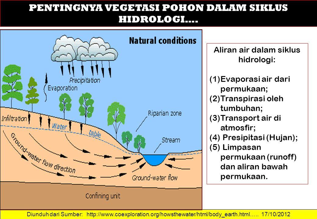 Diunduh dari Sumber: http://www.coexploration.org/howsthewater/html/body_earth.html….. 17/10/2012 PENTINGNYA VEGETASI POHON DALAM SIKLUS HIDROLOGI…. A