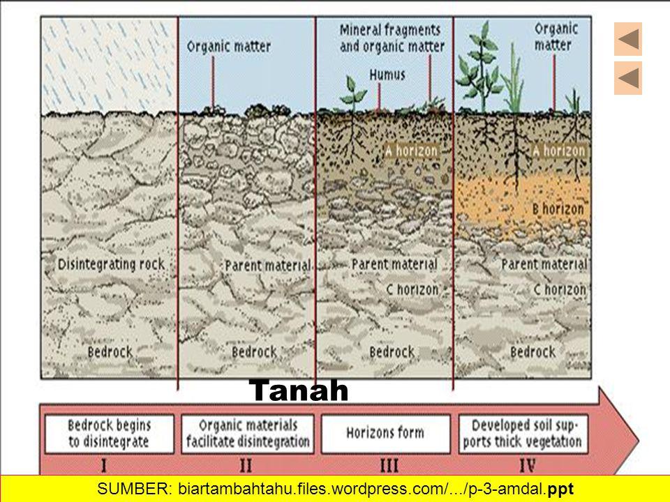 34 Tanah SUMBER: biartambahtahu.files.wordpress.com/.../p-3-amdal.ppt