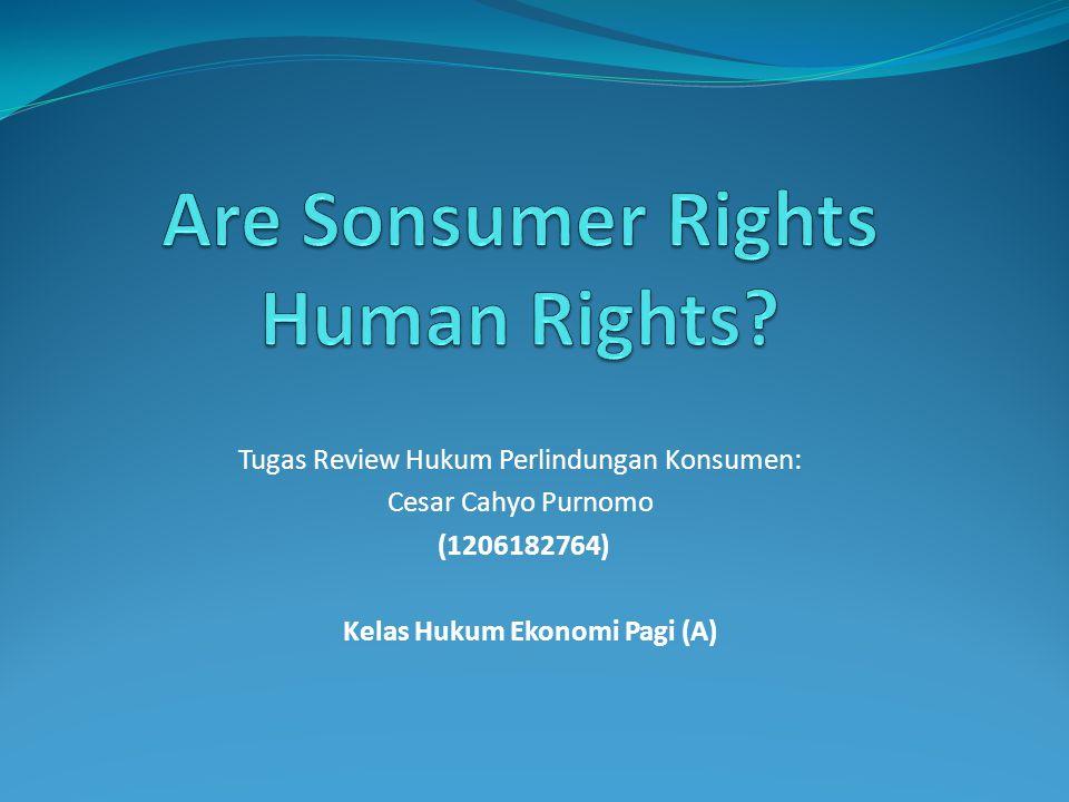 Tugas Review Hukum Perlindungan Konsumen: Cesar Cahyo Purnomo (1206182764) Kelas Hukum Ekonomi Pagi (A)
