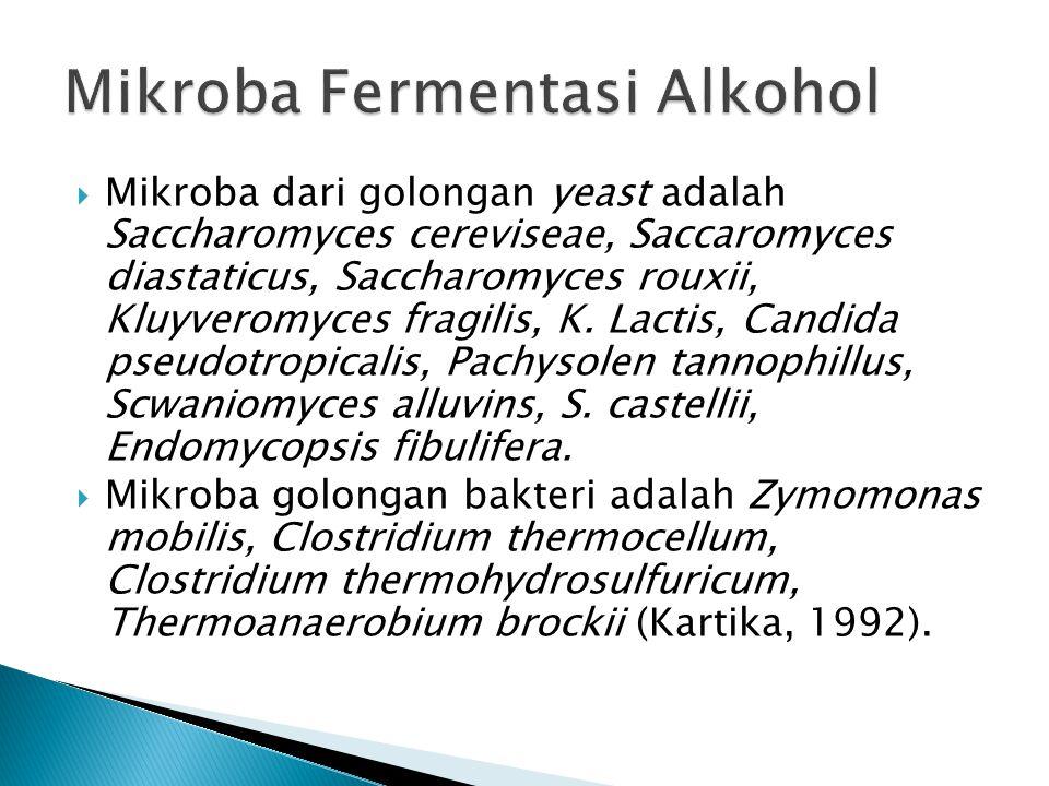  Mikroba dari golongan yeast adalah Saccharomyces cereviseae, Saccaromyces diastaticus, Saccharomyces rouxii, Kluyveromyces fragilis, K. Lactis, Cand