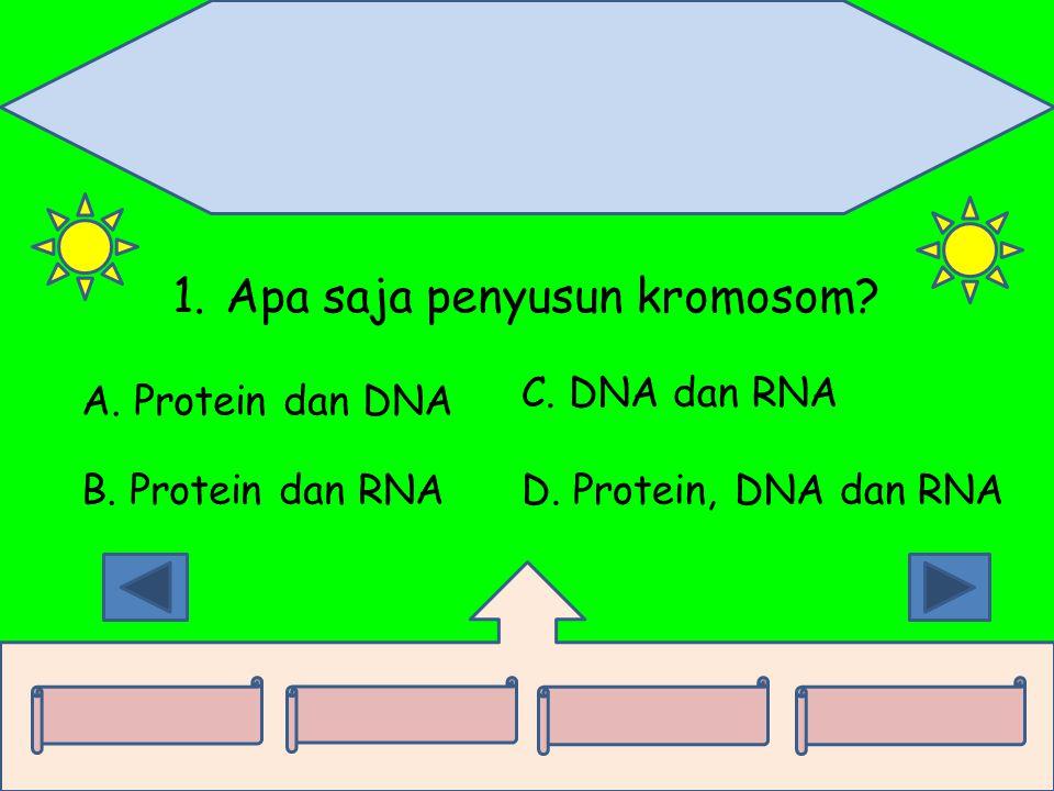 1.Apa saja penyusun kromosom? A. Protein dan DNA B. Protein dan RNA C. DNA dan RNA D. Protein, DNA dan RNA
