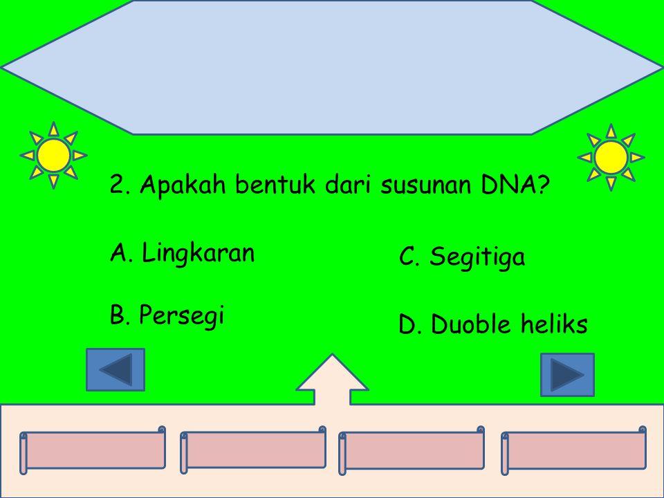 2. Apakah bentuk dari susunan DNA? A. Lingkaran B. Persegi C. Segitiga D. Duoble heliks