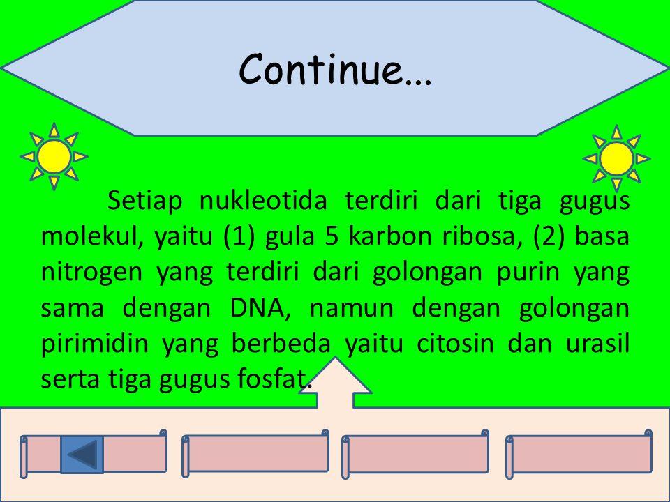Continue... Setiap nukleotida terdiri dari tiga gugus molekul, yaitu (1) gula 5 karbon ribosa, (2) basa nitrogen yang terdiri dari golongan purin yang