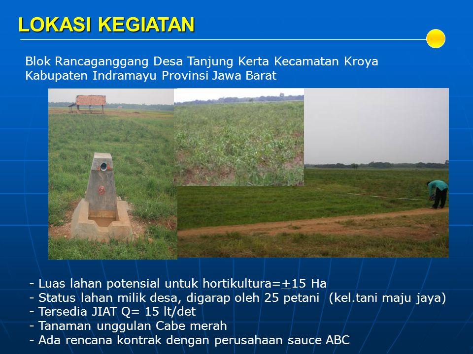 LOKASI KEGIATAN Blok Rancaganggang Desa Tanjung Kerta Kecamatan Kroya Kabupaten Indramayu Provinsi Jawa Barat - Luas lahan potensial untuk hortikultur