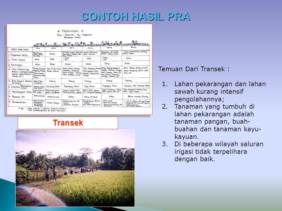Transek Temuan Dari Transek : 1.Lahan pekarangan dan lahan sawah kurang intensif pengolahannya; 2.Tanaman yang tumbuh di lahan pekarangan adalah tanam
