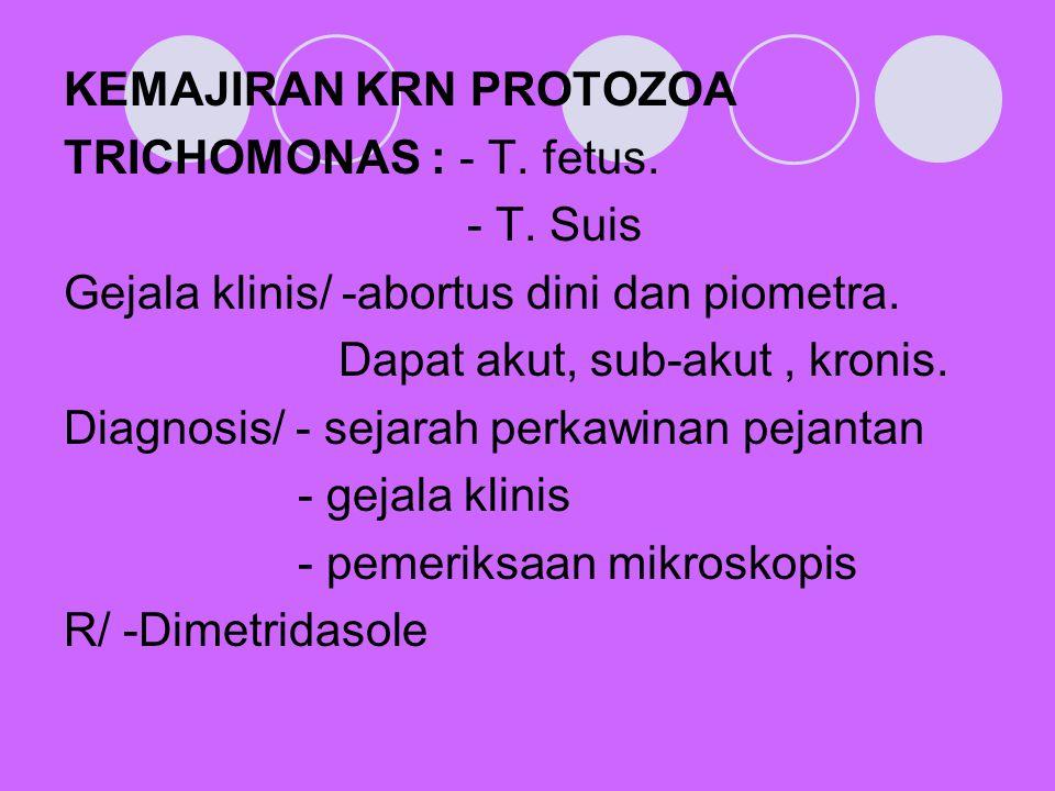 KEMAJIRAN KRN PROTOZOA TRICHOMONAS : - T. fetus. - T. Suis Gejala klinis/ -abortus dini dan piometra. Dapat akut, sub-akut, kronis. Diagnosis/ - sejar