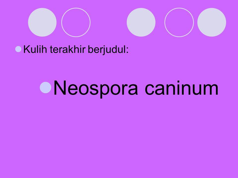 Kulih terakhir berjudul: Neospora caninum