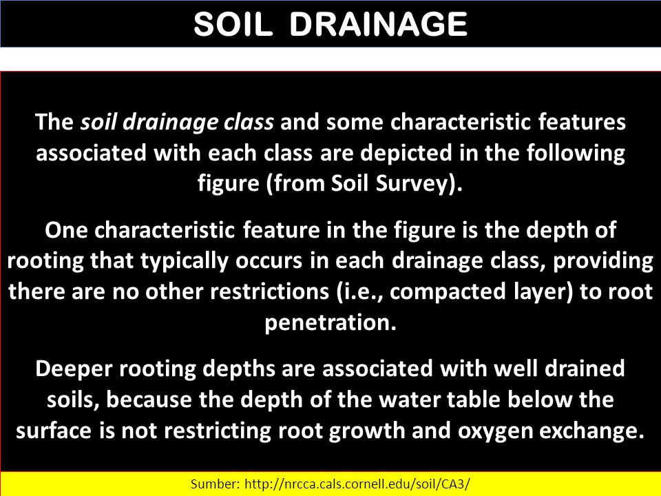 SOIL DRAINAGE The soil drainage class and some characteristic features associated with each class are depicted in the following figure (from Soil Surv