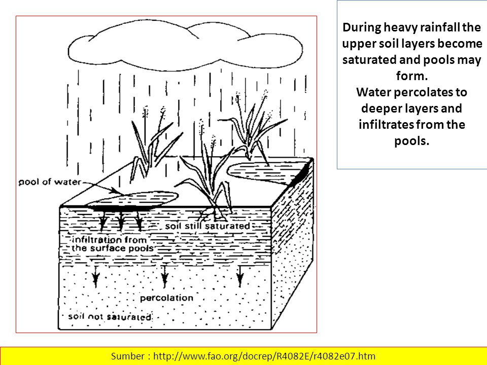 During heavy rainfall the upper soil layers become saturated and pools may form. Water percolates to deeper layers and infiltrates from the pools. Sum