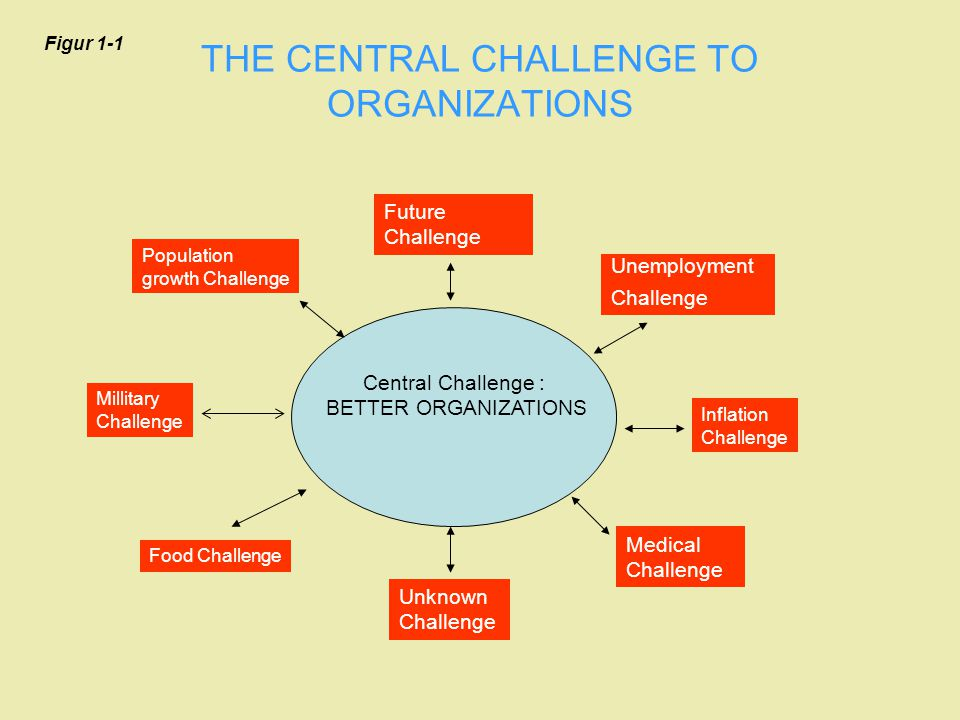 Future Challenge THE CENTRAL CHALLENGE TO ORGANIZATIONS Central Challenge : BETTER ORGANIZATIONS Millitary Challenge Inflation Challenge Unknown Chall