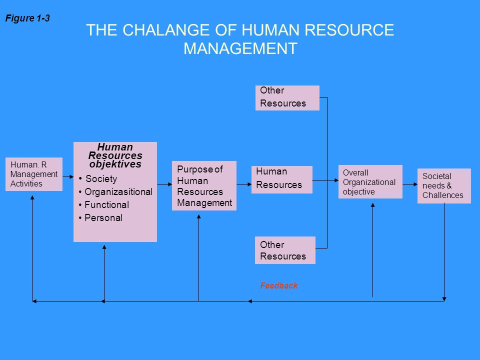 THE CHALANGE OF HUMAN RESOURCE MANAGEMENT Human. R Management Activities Human Resources objektives Society Organizasitional Functional Personal Purpo