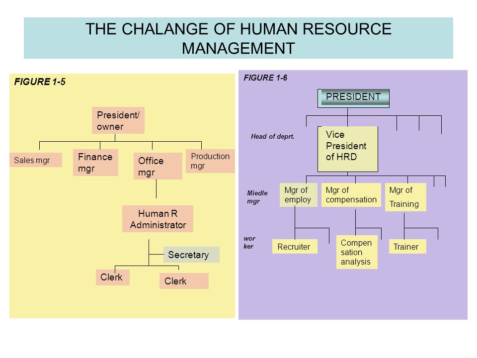 Human Resource Mgt Models & Subsystems Figure 1-8 Objectives Sociatel Organizational Functional Personal IV Compensation & Protection I Foundations & Challenge II Preparation & Selection III Development & Evaluation VI HR.