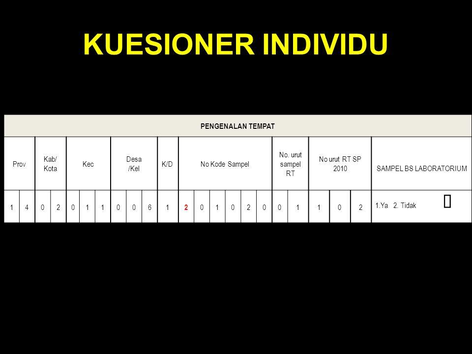 KUESIONER INDIVIDU PENGENALAN TEMPAT Prov Kab/ Kota Kec Desa /Kel K/DK/DNo Kode Sampel No. urut sampel RT No urut RT SP 2010SAMPEL BS LABORATORIUM 140