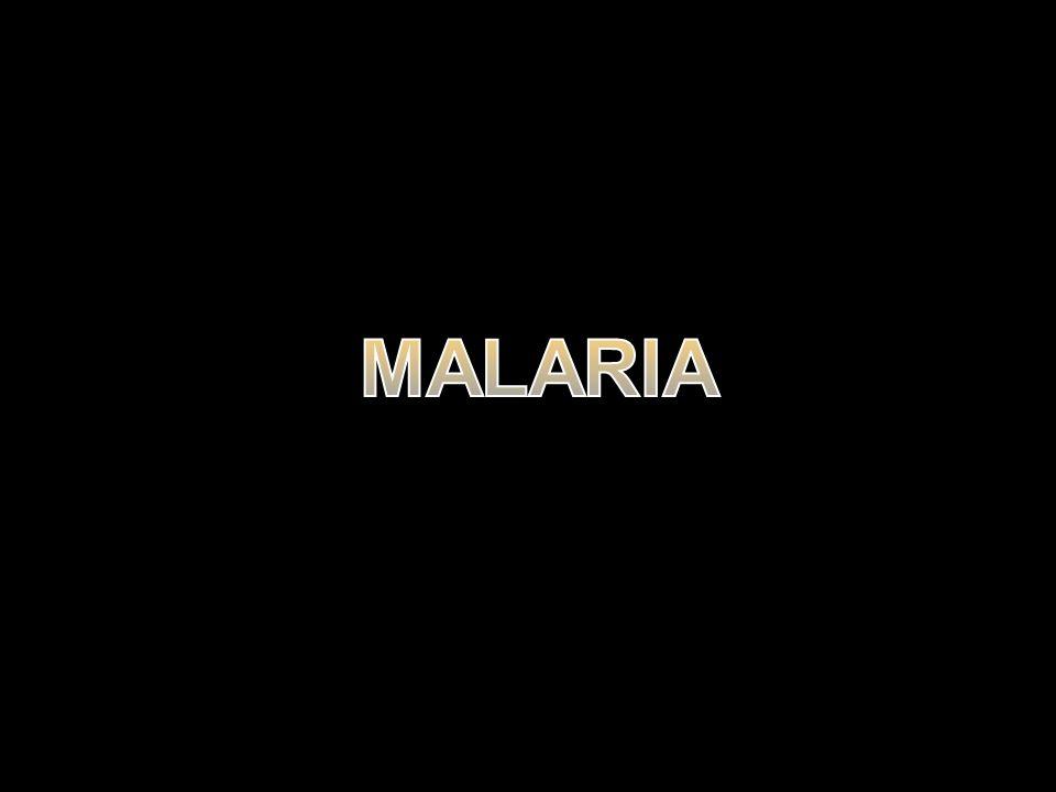 TUJUAN Menentukan API 2009-2010 Menentukan period prevalence 1 bulan terakhir Menentukan jenis fasilitas pelayanan kesehatan yang dimanfaatkan untuk memastikan penyakit malaria Menentukan persentase penderita malaria yang diobati dengan ACT Menentukan persentase penderita malaria yang diobati ACT dalam 24 jam pertama/ Persentase balita yang mendapat penanganan malaria secara efektif