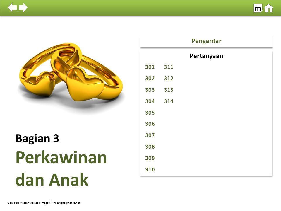 100% SDKI 2012 Tujuan : Memperoleh informasi tentang pendapat responden mengenai perkawinan dan anak.