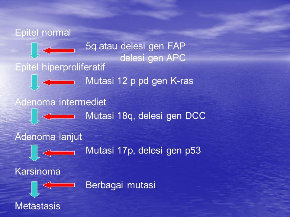Epitel normal Epitel hiperproliferatif Adenoma intermediet Adenoma lanjut Karsinoma Metastasis 5q atau delesi gen FAP delesi gen APC Mutasi 12 p pd ge