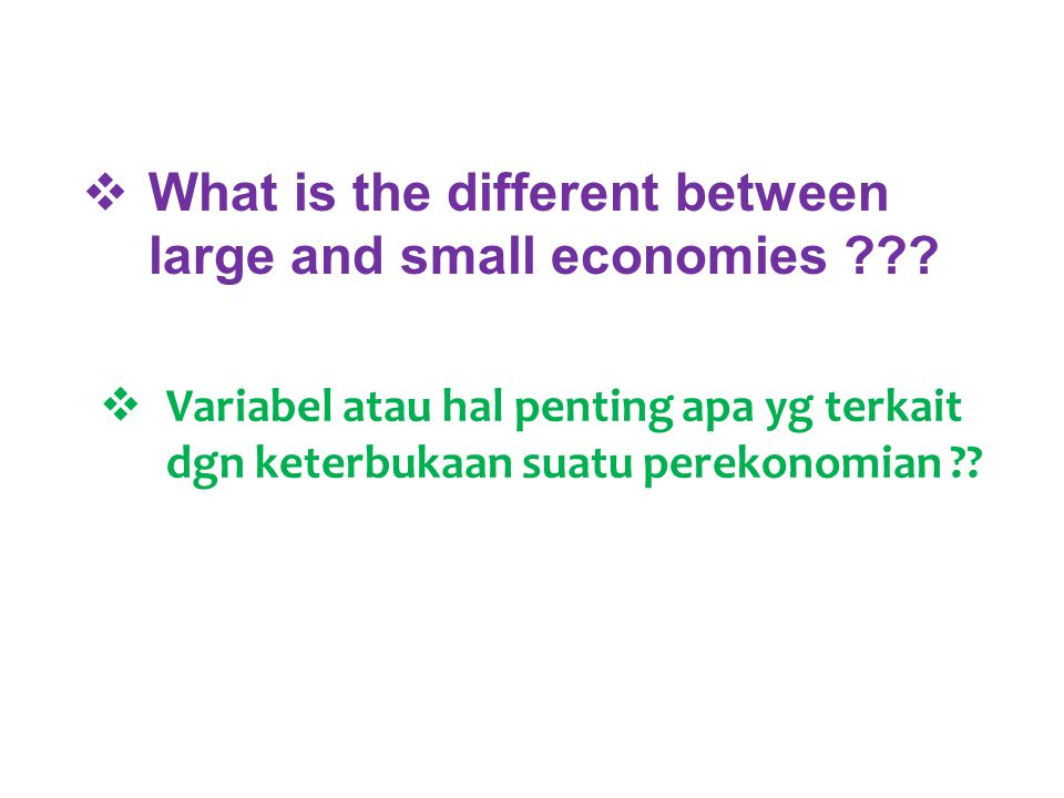  What is the different between large and small economies ??.