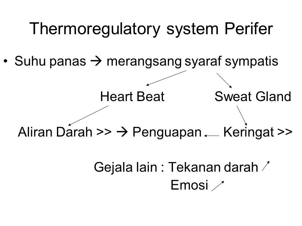 Thermoregulatory system Perifer Suhu panas  merangsang syaraf sympatis Heart BeatSweat Gland Aliran Darah >>  Penguapan Keringat >> Gejala lain : Te