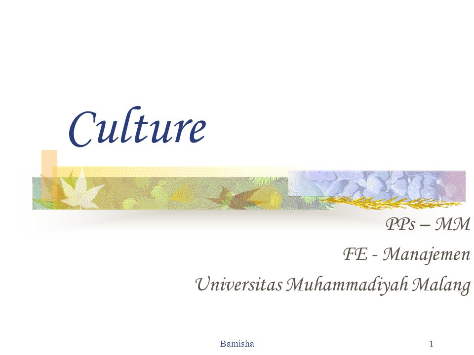 Bamisha 2 Culture The values and norms society emphasizes Values: Individuality Independence Achievement Self-fulfillment
