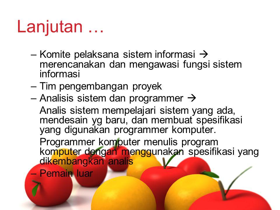 Lanjutan … –Komite pelaksana sistem informasi  merencanakan dan mengawasi fungsi sistem informasi –Tim pengembangan proyek –Analisis sistem dan progr