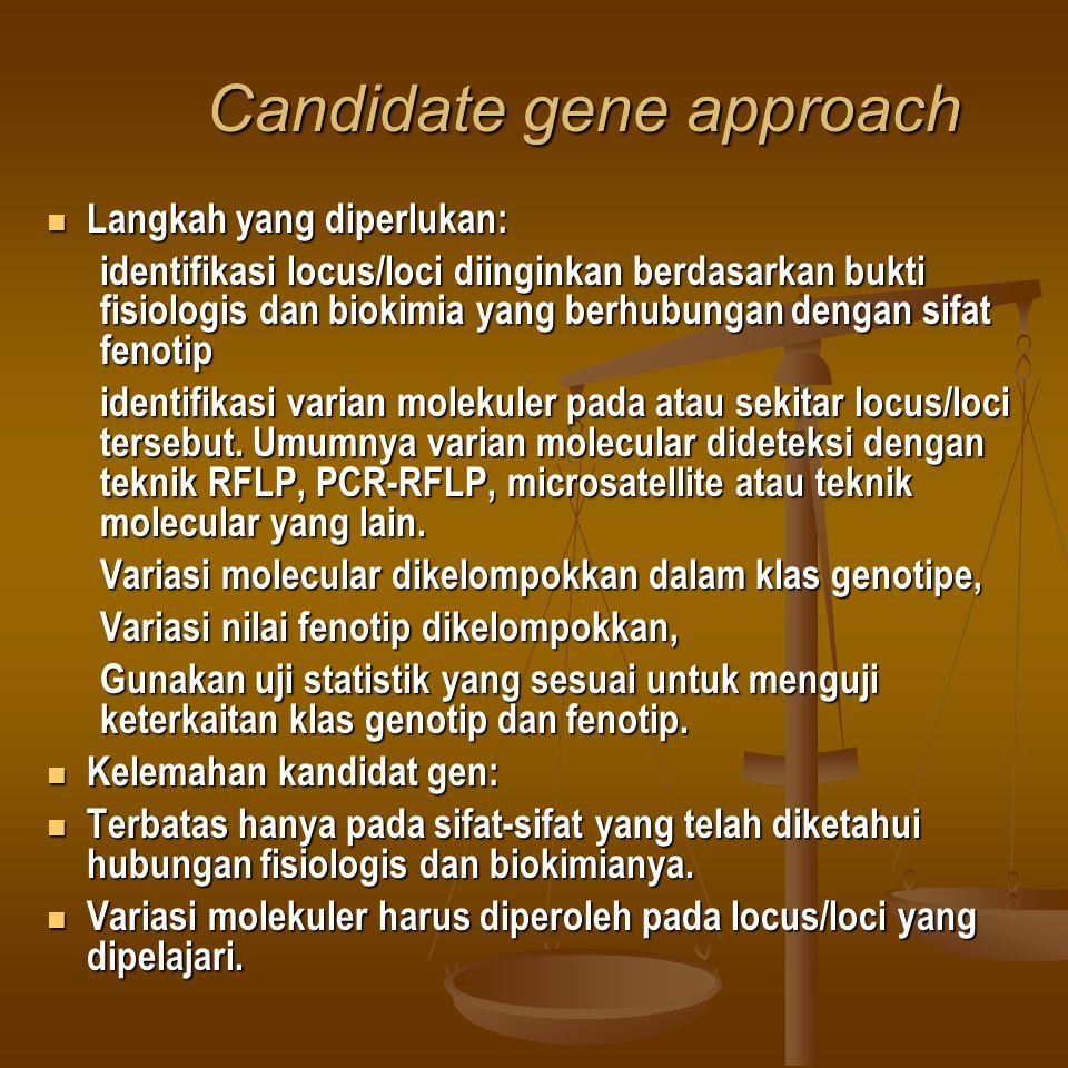 Candidate gene approach Langkah yang diperlukan: Langkah yang diperlukan: identifikasi locus/loci diinginkan berdasarkan bukti fisiologis dan biokimia