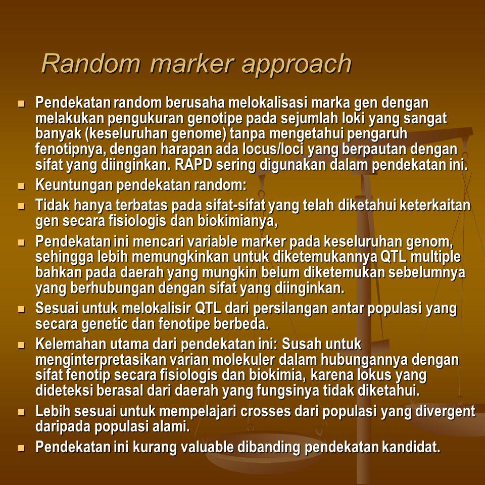 Random marker approach Pendekatan random berusaha melokalisasi marka gen dengan melakukan pengukuran genotipe pada sejumlah loki yang sangat banyak (k