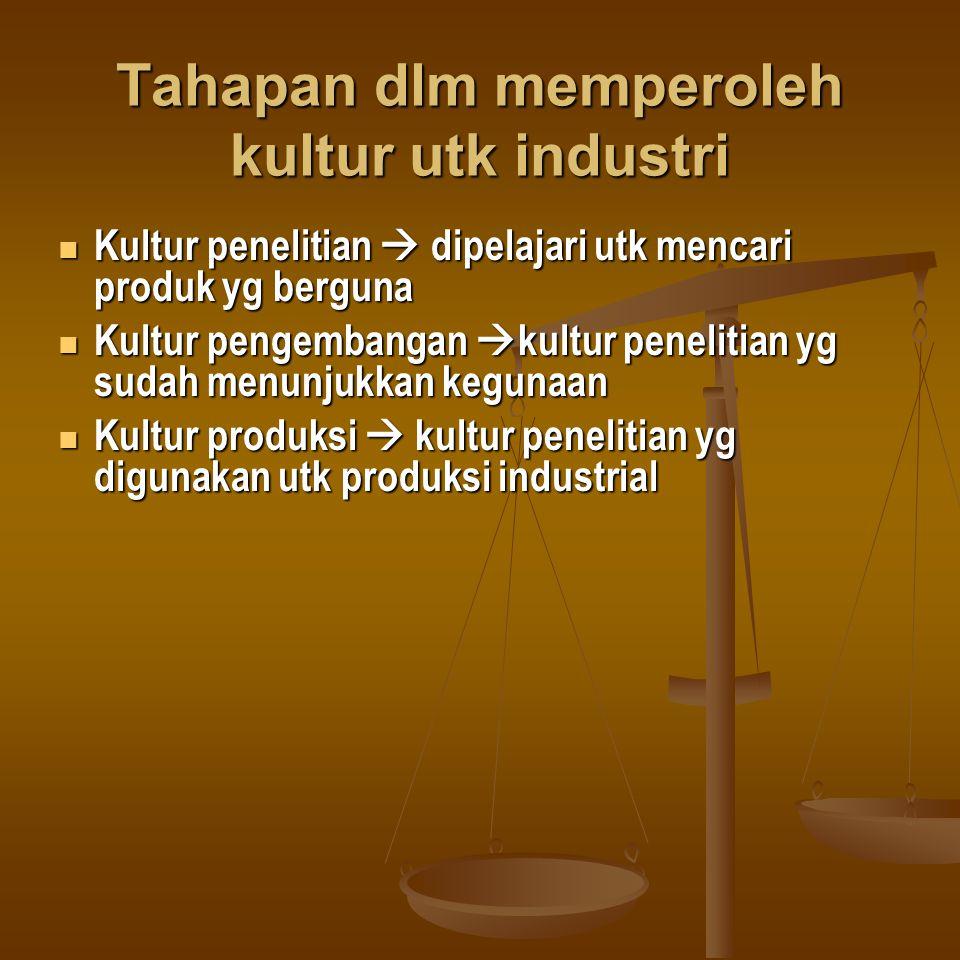 Tahapan dlm memperoleh kultur utk industri Kultur penelitian  dipelajari utk mencari produk yg berguna Kultur penelitian  dipelajari utk mencari pro